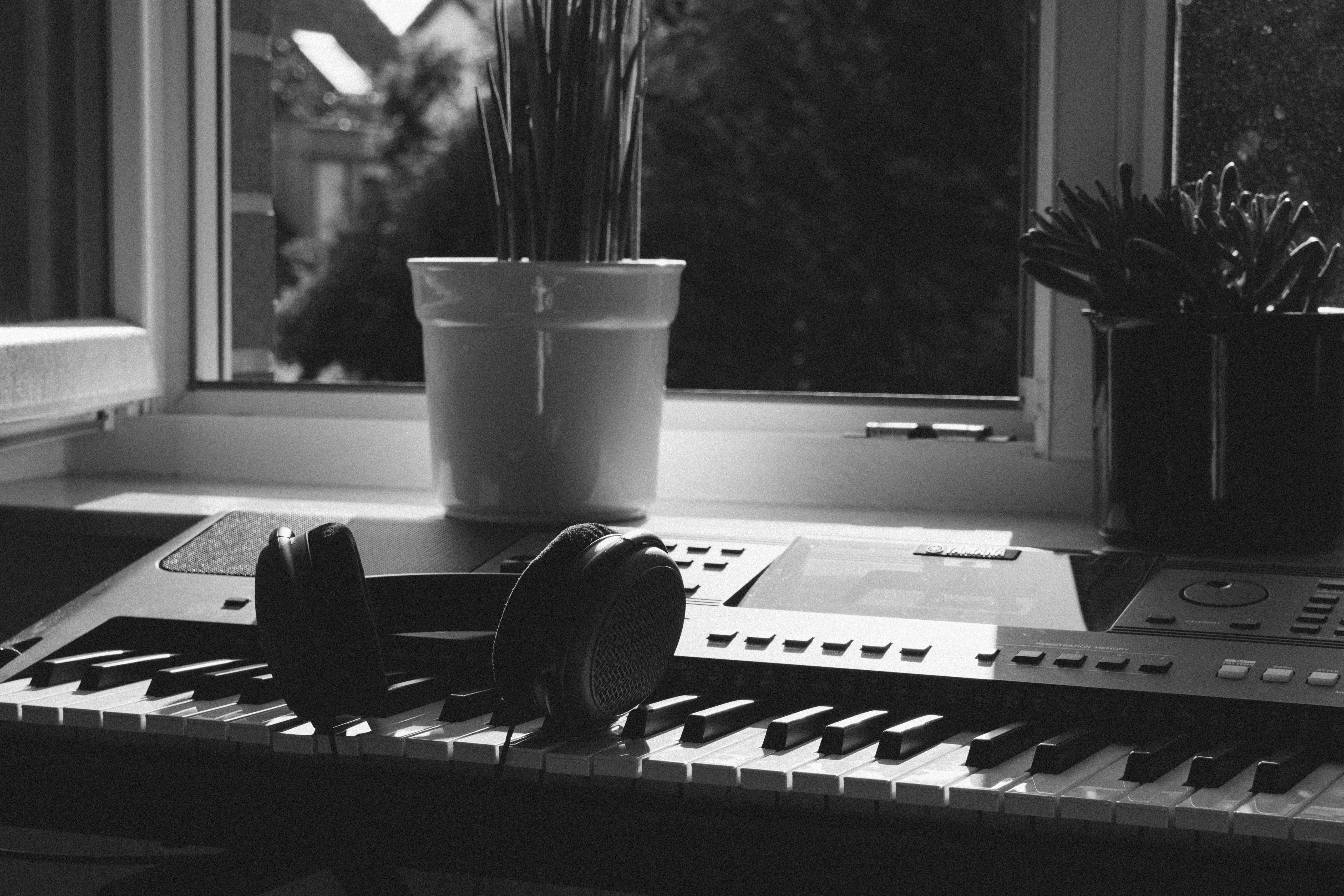 ακουστικά, ασπρόμαυρο, γλάστρες