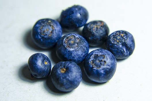 Close-up of Blue Balls