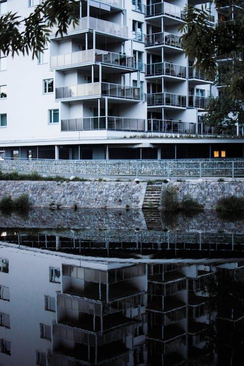 アパート, 反射, 建築の無料の写真素材