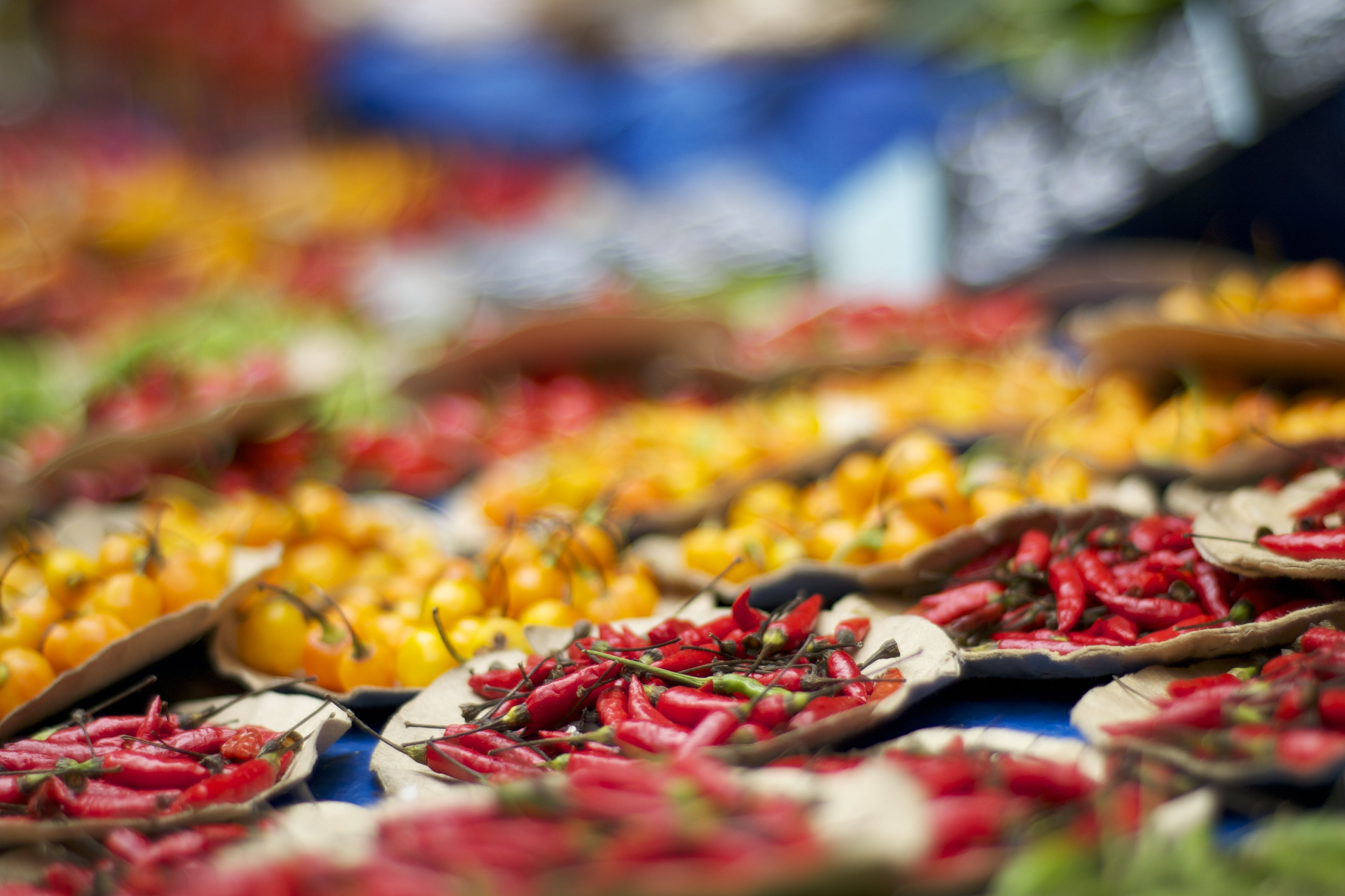 Selective Focus Photography of Bunch of Chilies