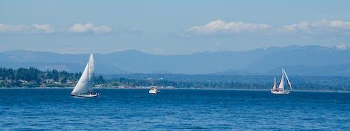 Fotos de stock gratuitas de agua, azul, barcos, everett washington