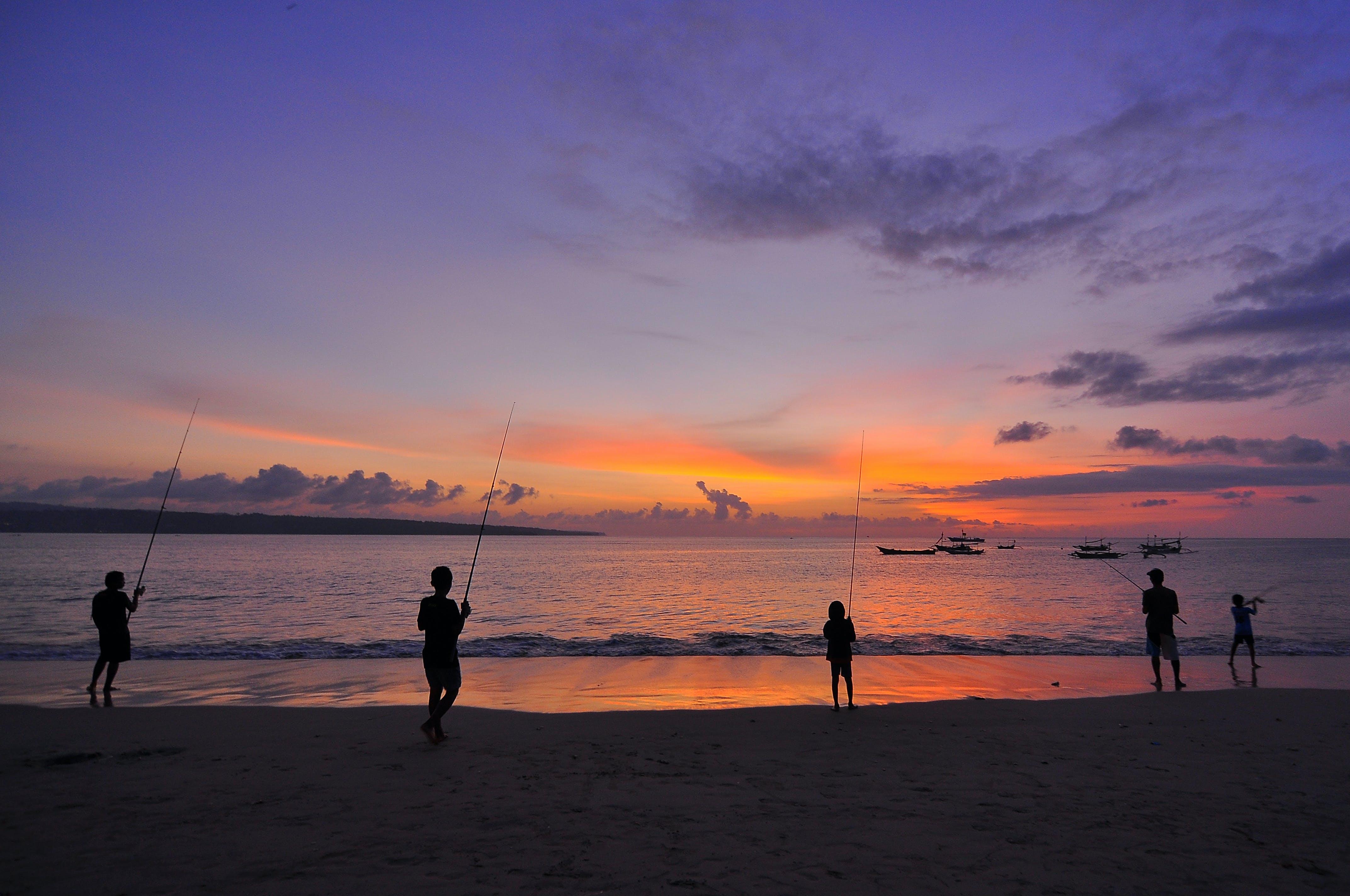 arkadan aydınlatılmış, Balık tutmak, boş zaman, deniz içeren Ücretsiz stok fotoğraf