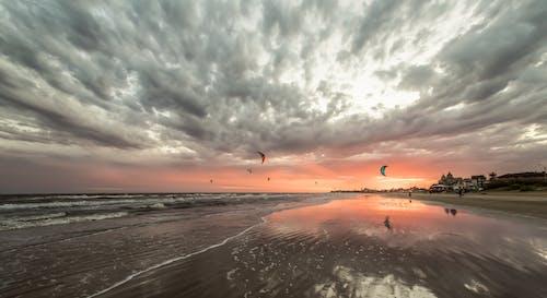 Immagine gratuita di kitesurf, litorale, nuvole, sole al tramonto