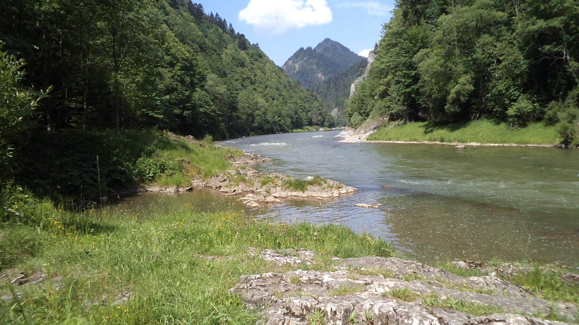 dunajec, nature, water