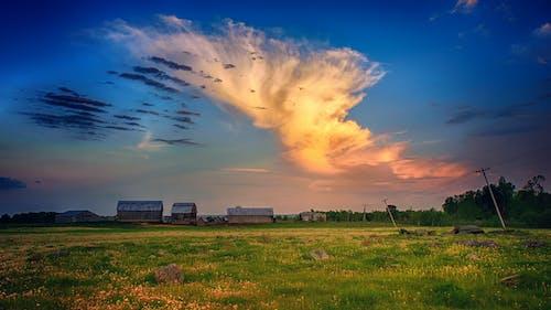 Green Grass Field Under Horizon Photography