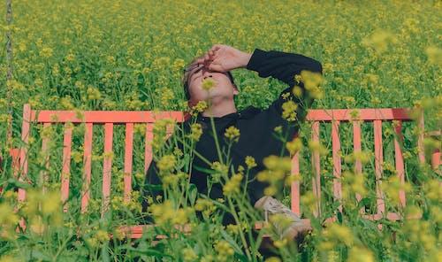 Základová fotografie zdarma na téma asiat, denní světlo, dospělý, hřiště