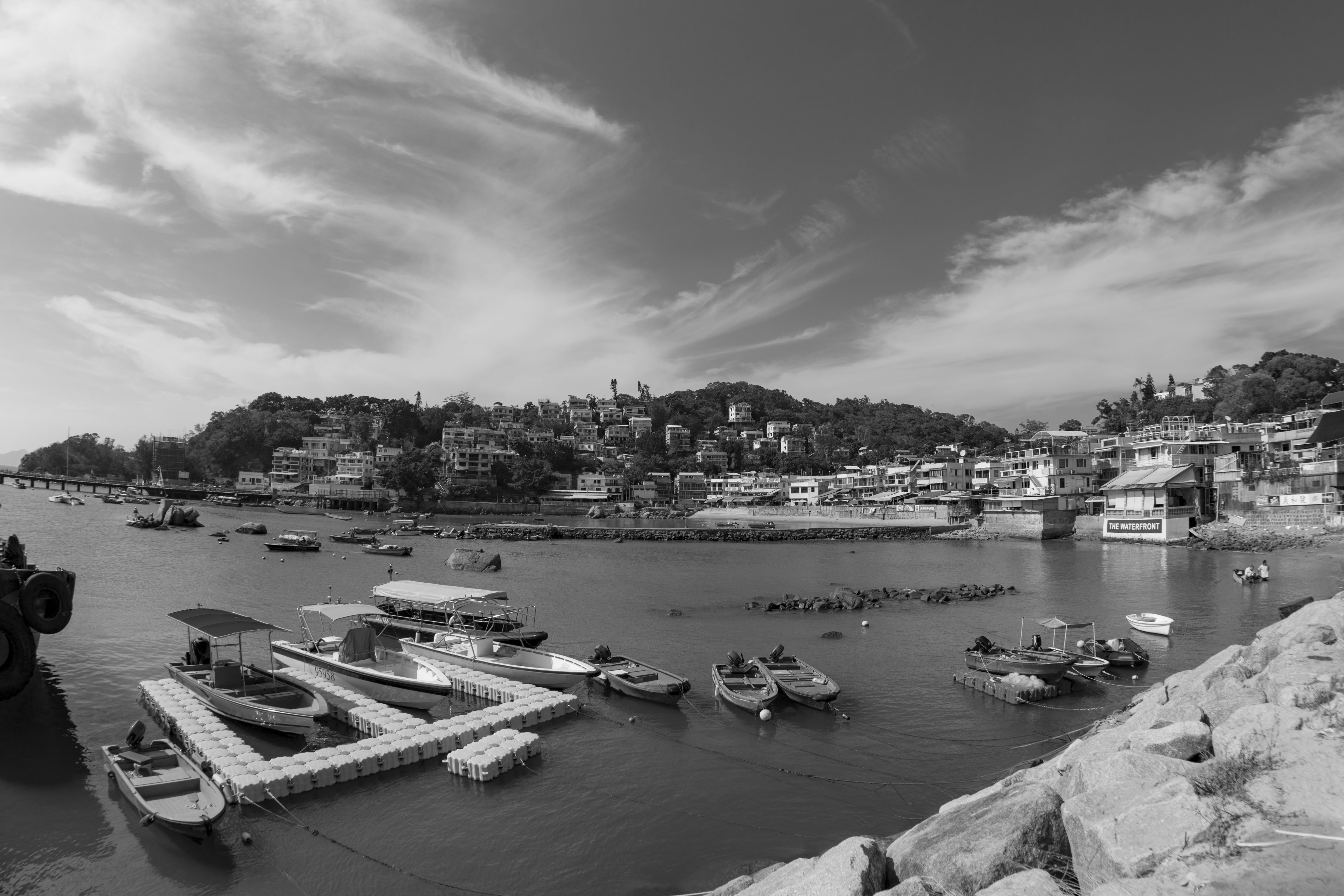 Grayscale Photography of Port Near Houses