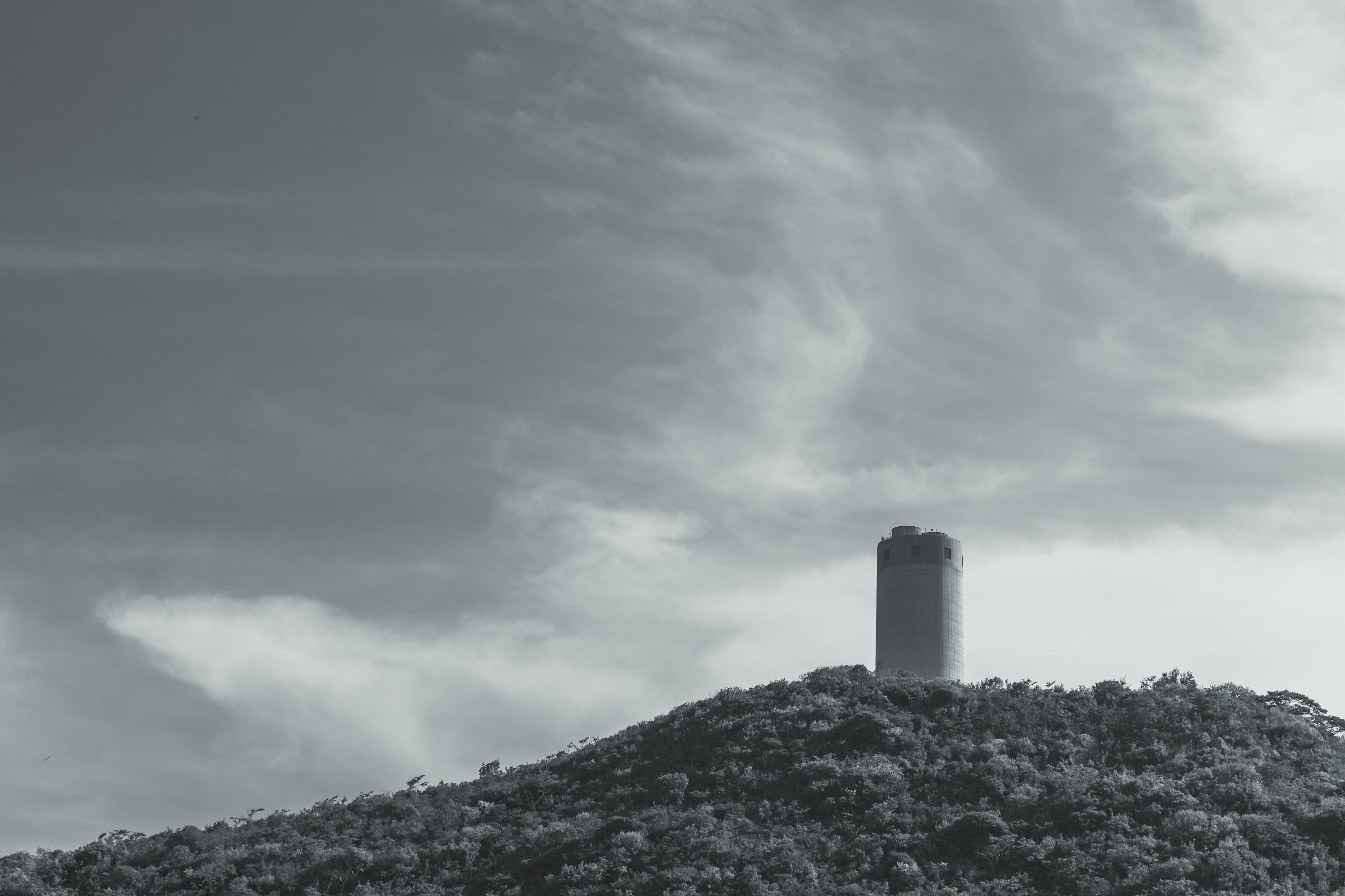 Grayscale Photography of Tower Surrounded by Trees