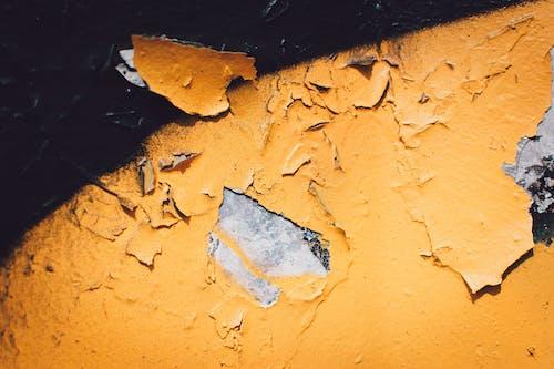 Безкоштовне стокове фото на тему «великий план, жовтий, пофарбований, розпад»