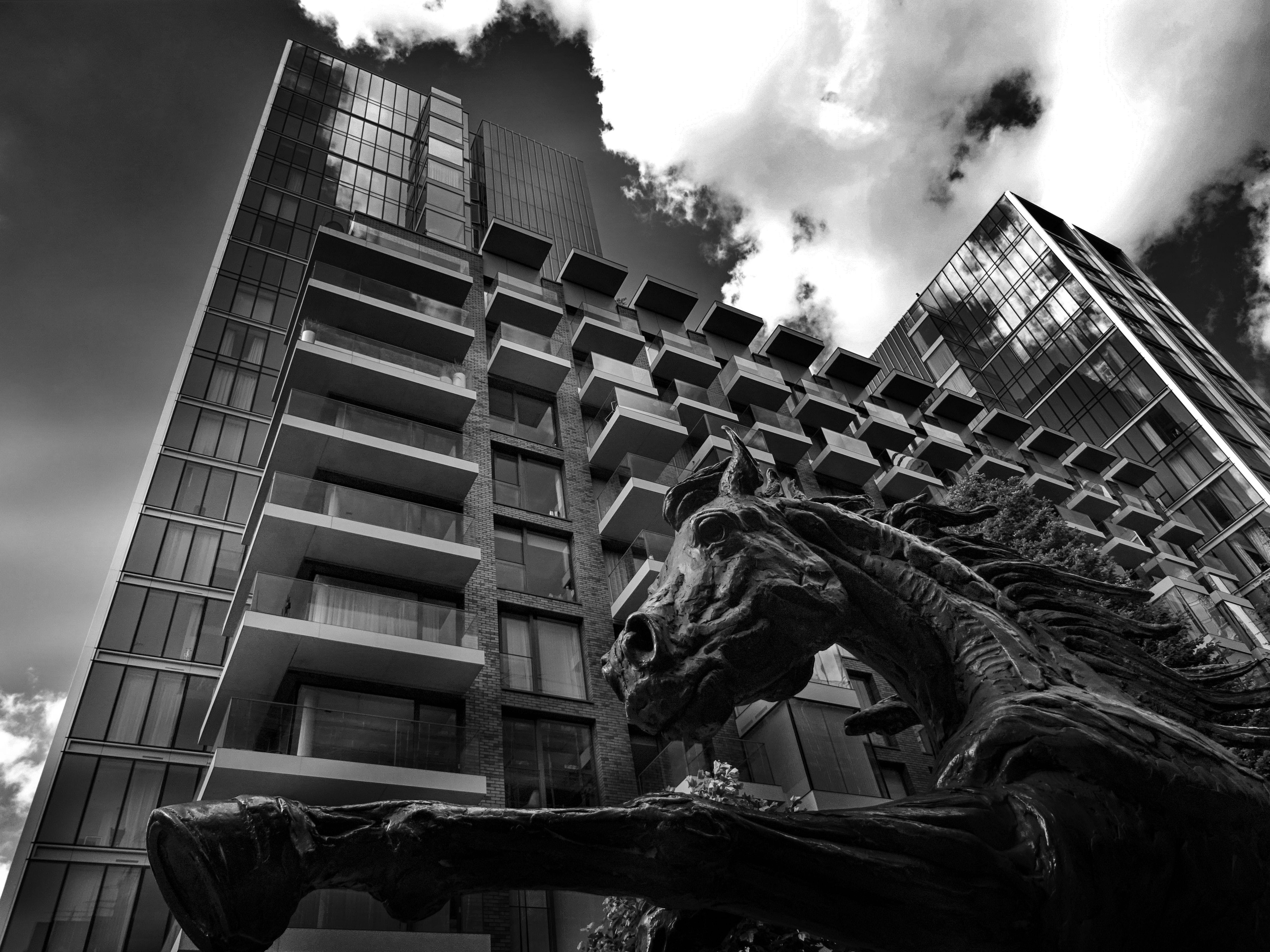 Worm's Eye View Photography of Horse and Building