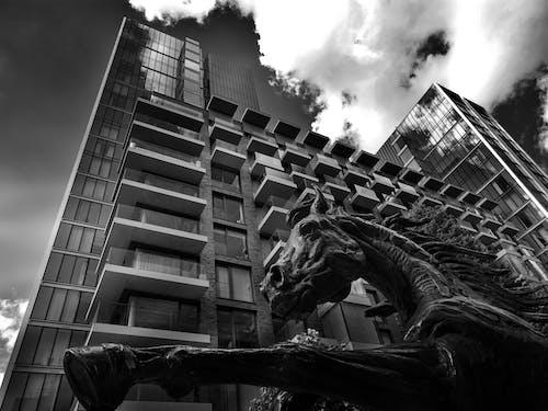 Fotobanka sbezplatnými fotkami na tému architektúra, budova, centrum mesta, čierna a biela