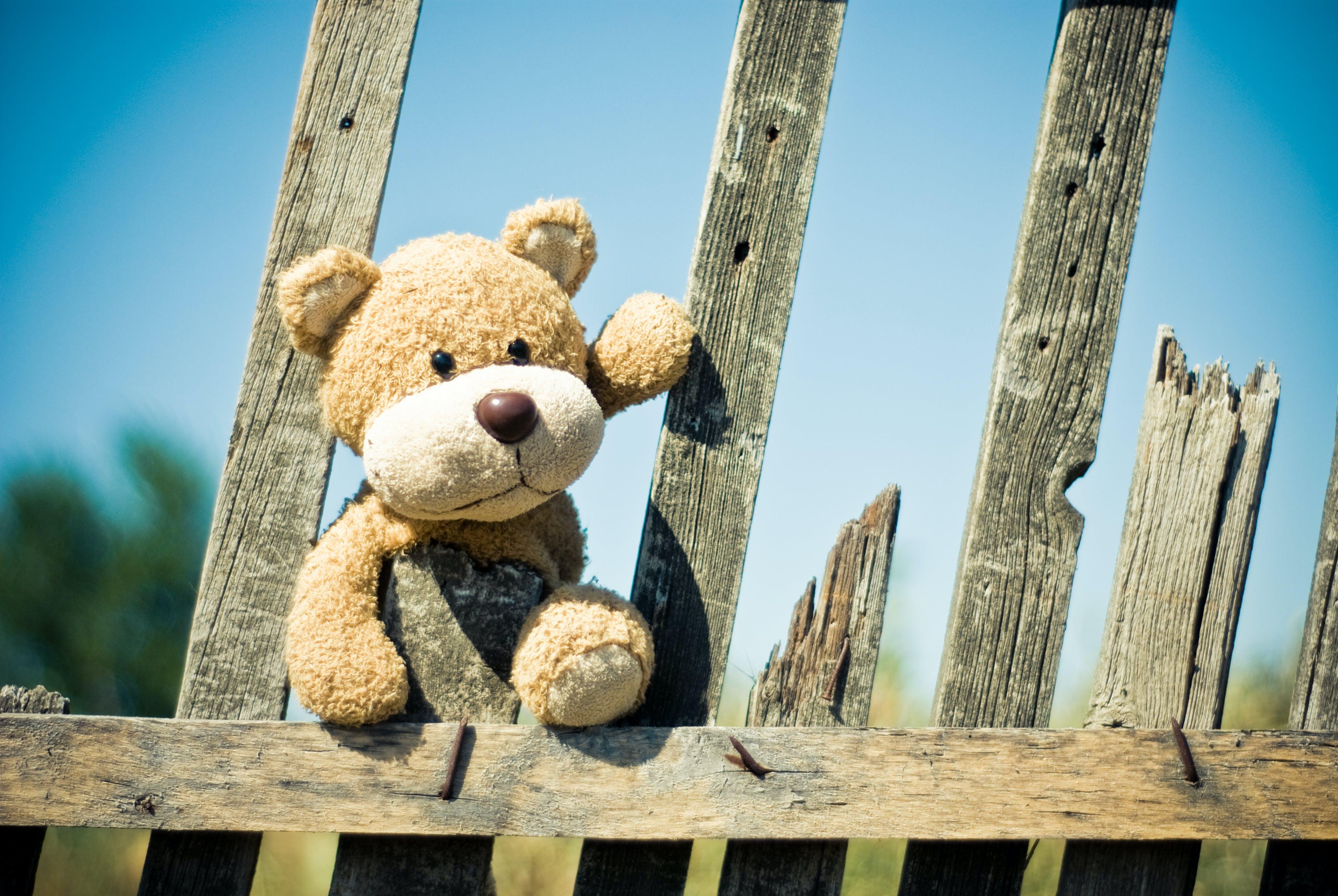คลังภาพถ่ายฟรี ของ กั้นรั้ว, ของเล่น, ตุ๊กตาหมี, ทำด้วยไม้