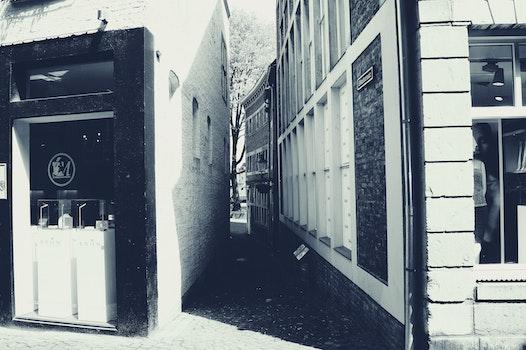 Free stock photo of black-and-white, street, shopping