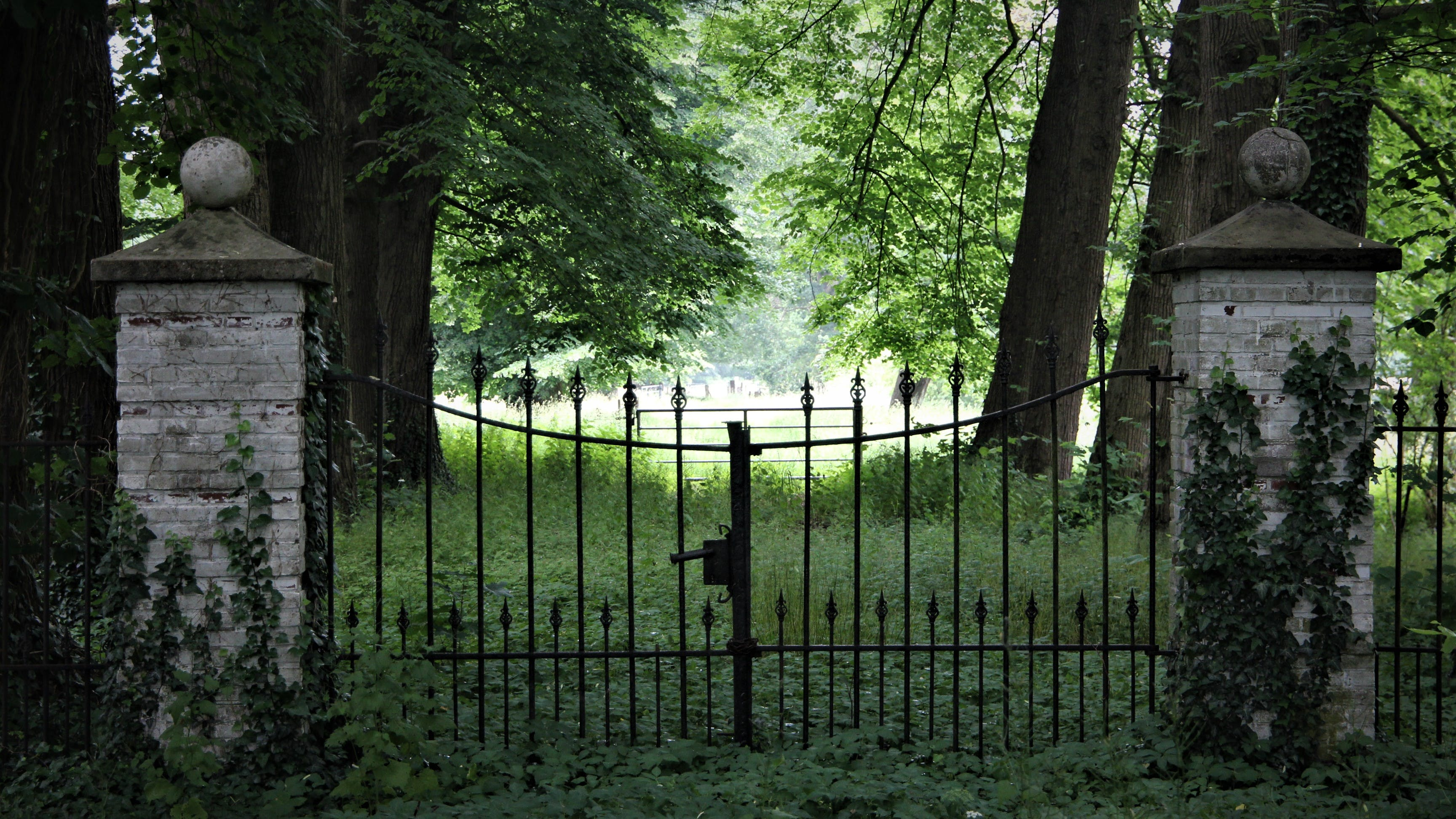 Free stock photo of abandoned, Deacy, empty shadow, gate