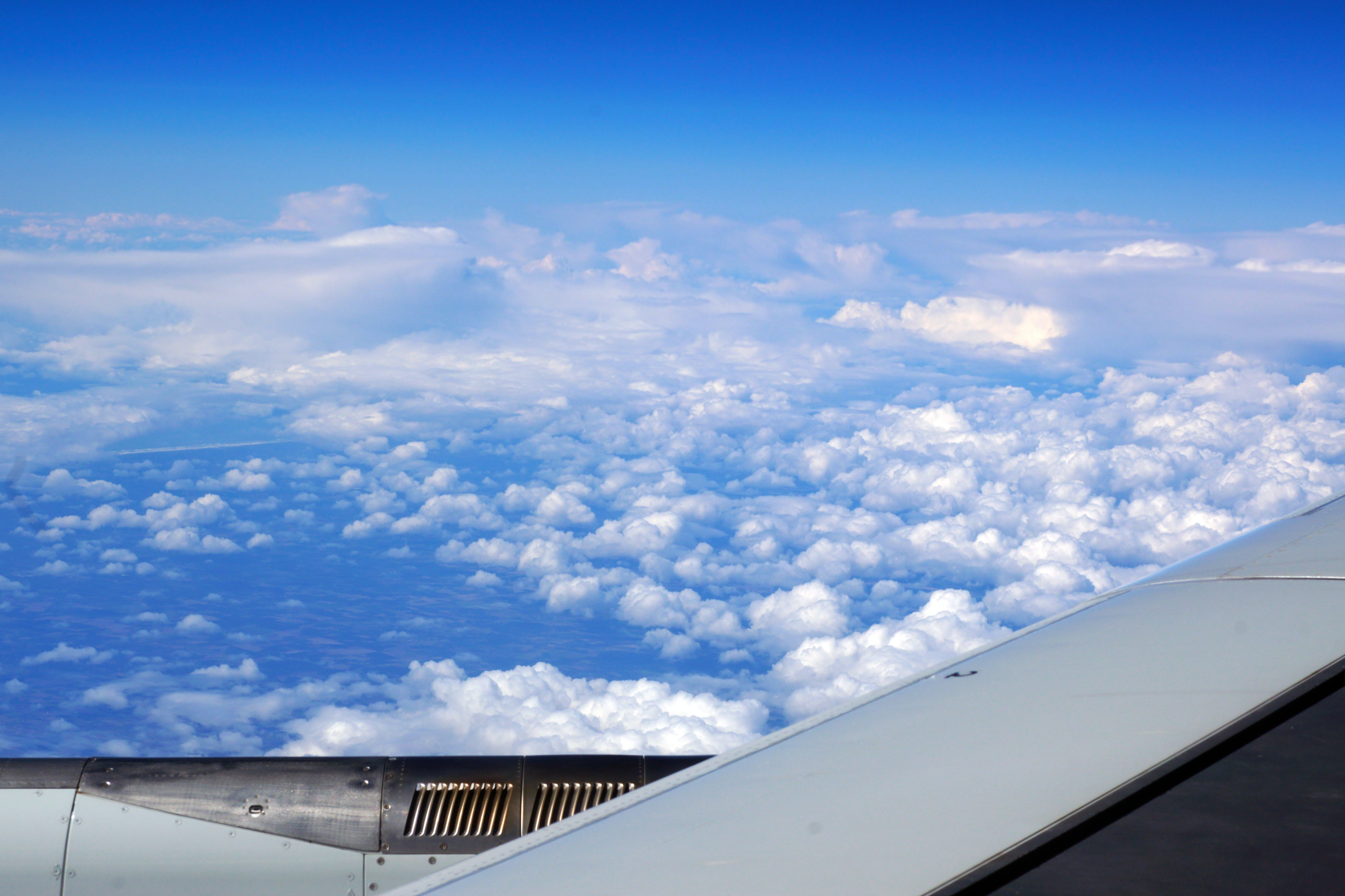 Free stock photo of blue sky, clouds, cotton clouds, flight