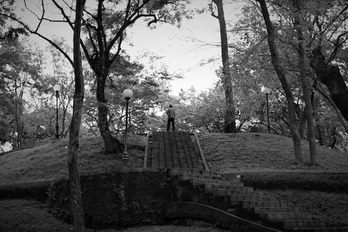Free stock photo of black and white, man, meditate, park