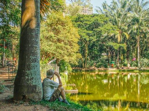 Photos gratuites de homme âgé, idoso paisagem, meilleur âge, paysage