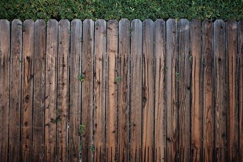 Fotobanka sbezplatnými fotkami na tému drevený, les, ohrada, plot