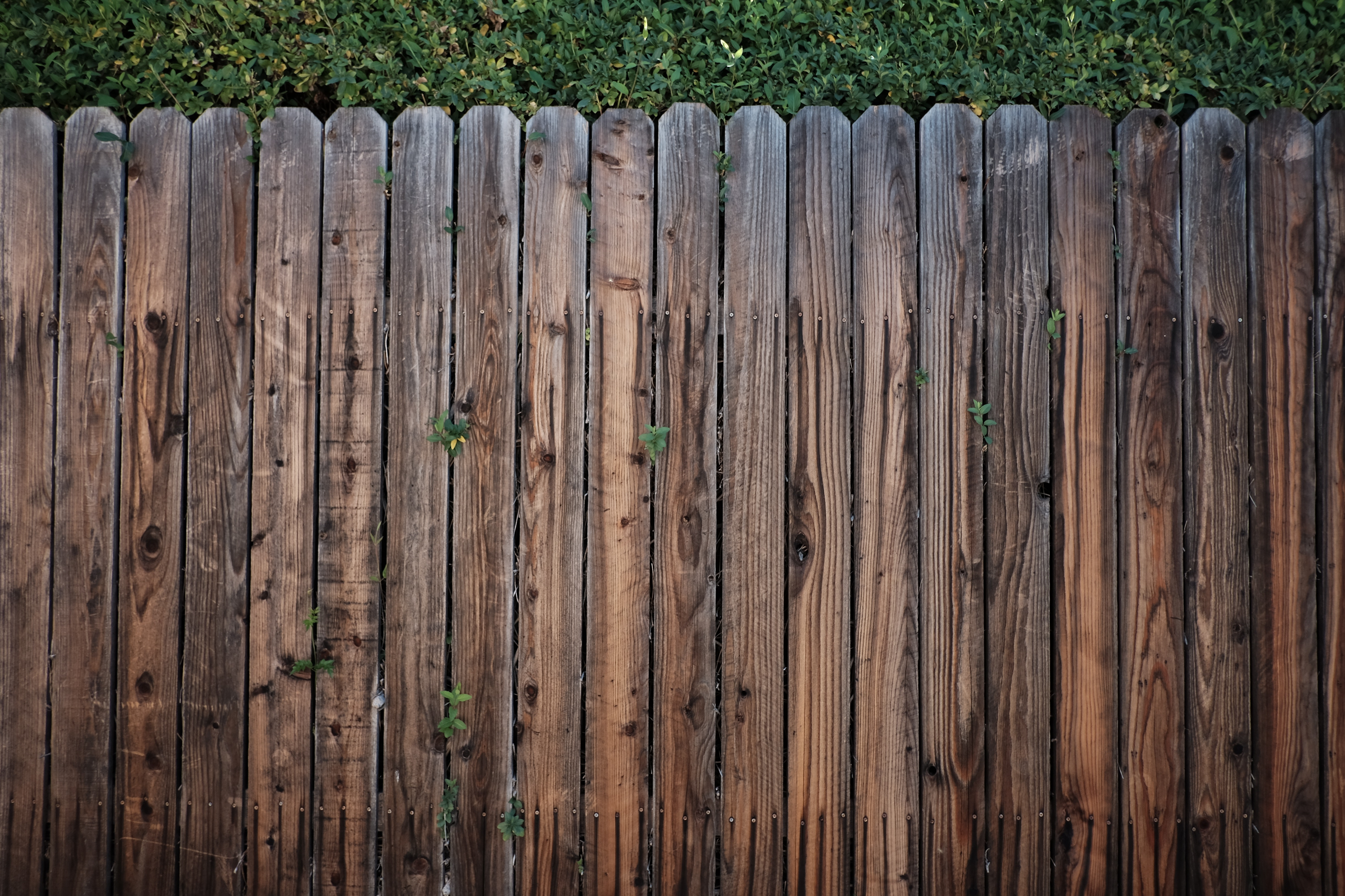 wood picket fence texture. Edit With Snappa · Brown Wooden Fence Wood Picket Texture C