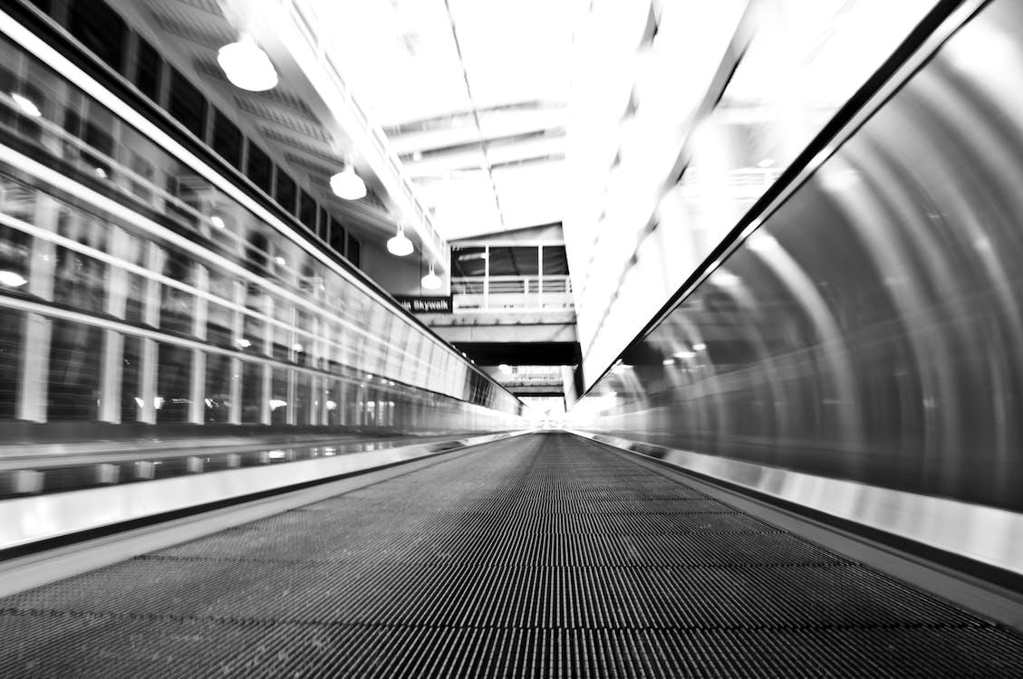 Pathway Grayscale Photo