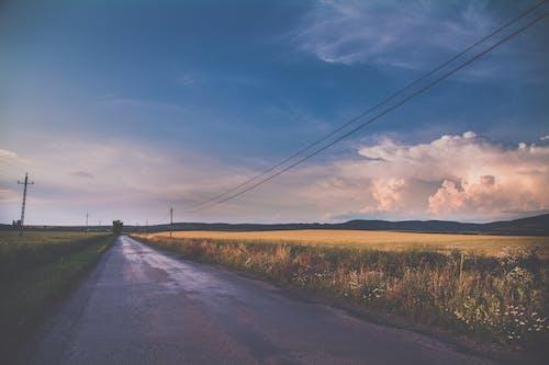 Concrete Road Between Grass Fields