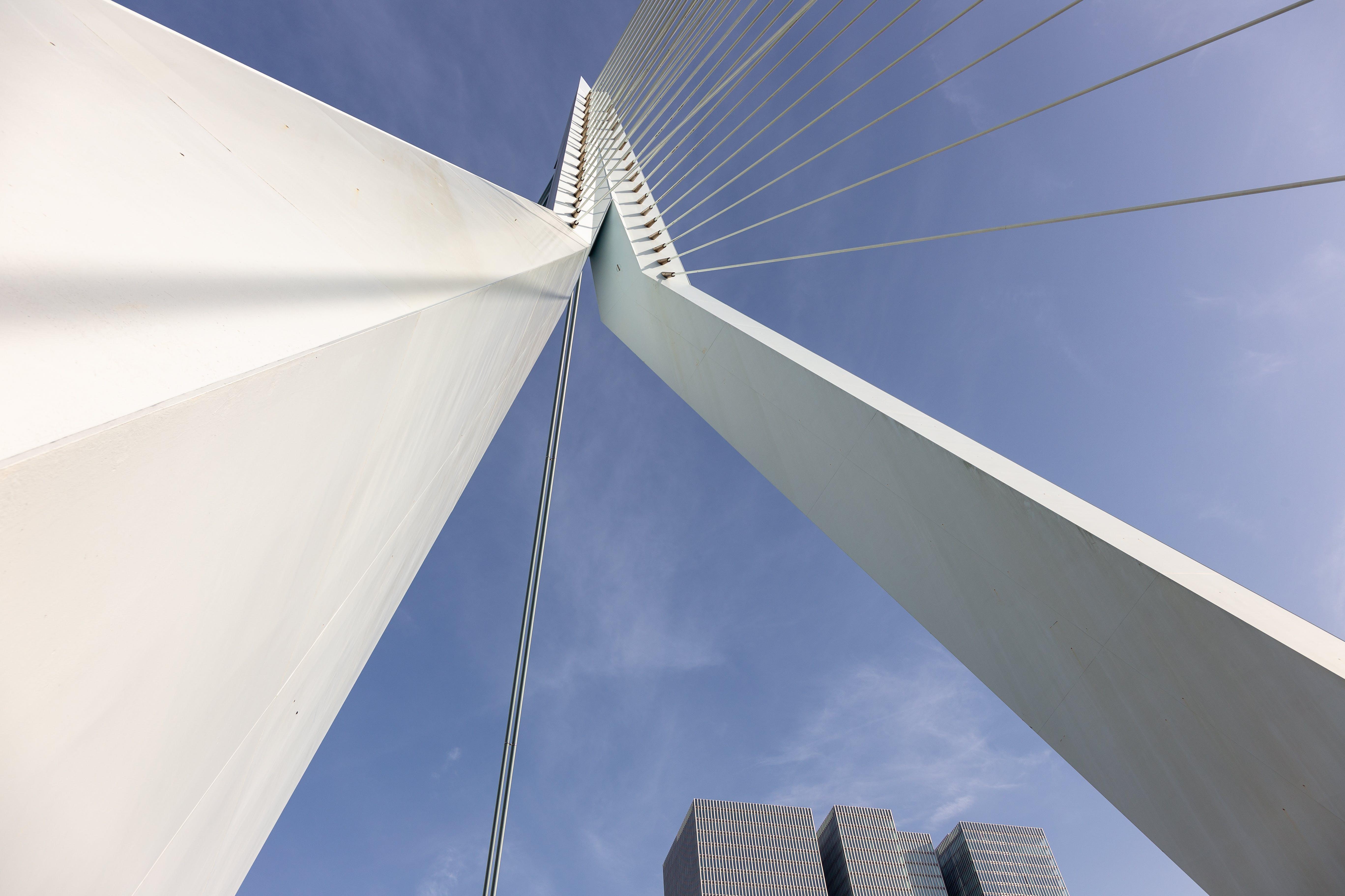 Free stock photo of architecture, cable-stayed bridge, netherlands, Rotterdam