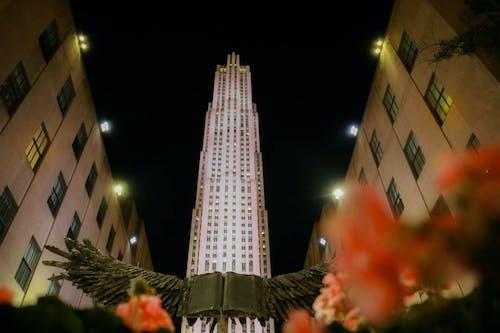 Free stock photo of plaza, Rockefeller, tourism, visitny