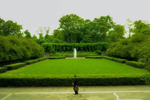 Free stock photo of botanical, botanical garden, eastside, gardens