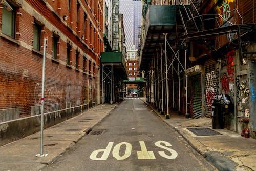 Free stock photo of alleyway, chinatown, manhattan, newyork