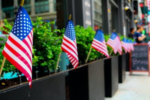 Free stock photo of america, freedom, independence, manhattan
