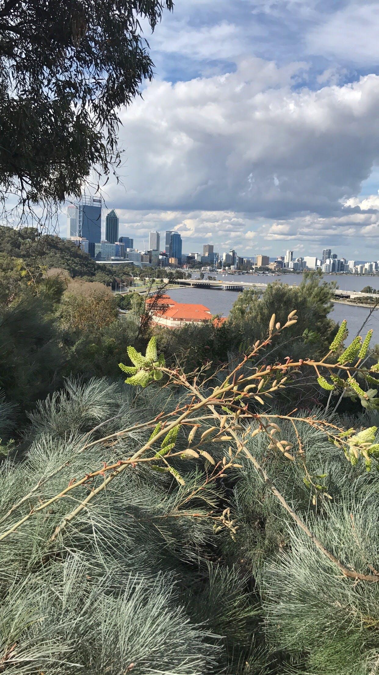 Free stock photo of australia, buildings, city