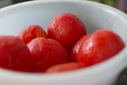 Gratis arkivbilde med tomat, tomater