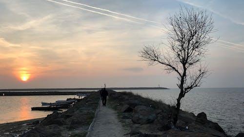Základová fotografie zdarma na téma #strom, egejské, lidé, moře