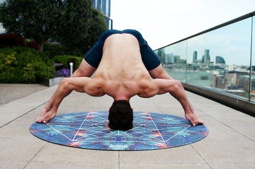 Kostenloses Stock Foto zu acro yoga, ausbildung, balance, bäume