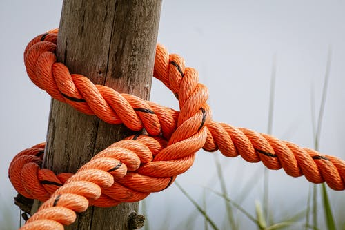 Orange Rope Wrapped Brown Wood Log