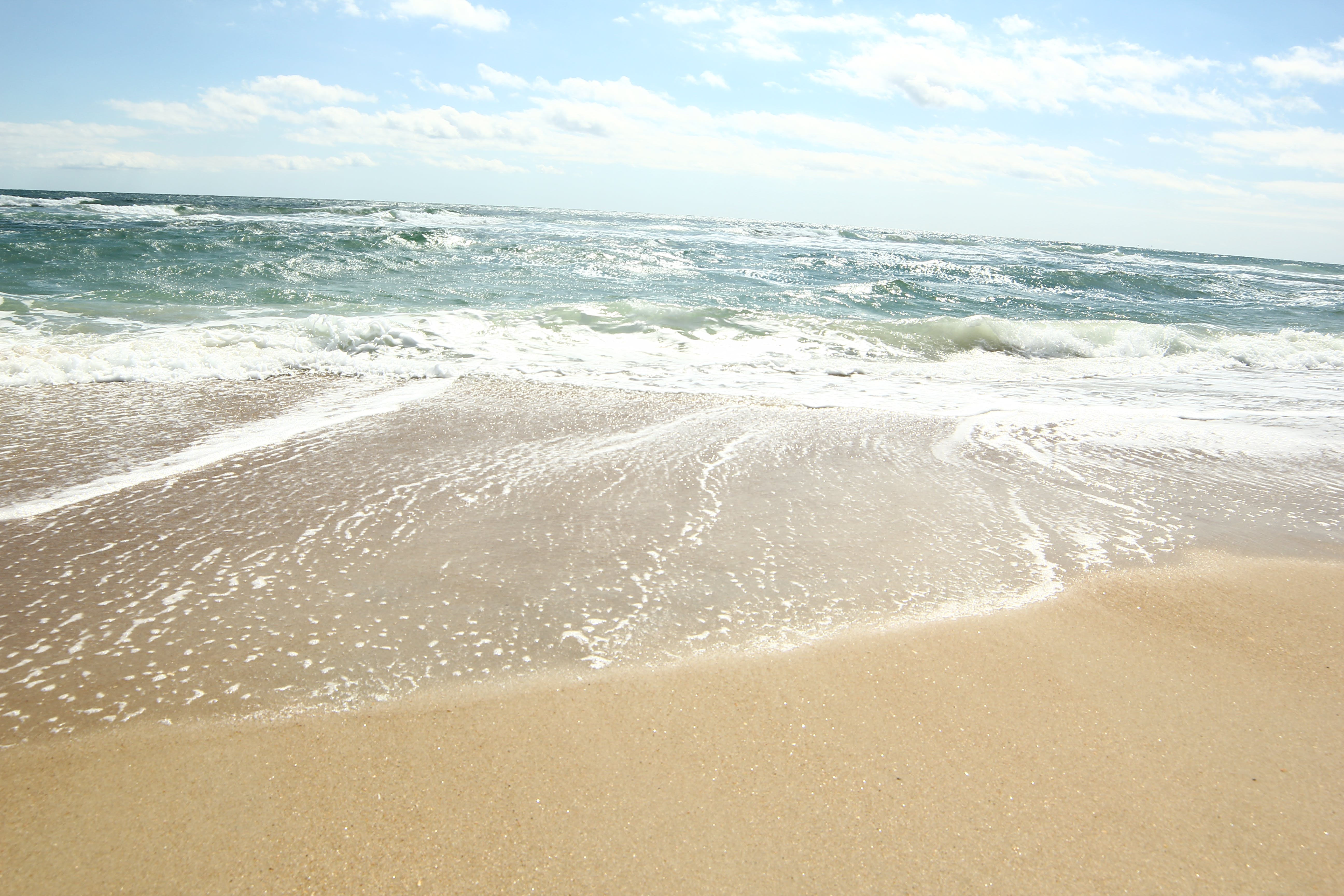 ノースカロライナ州, ビーチ, 夏, 大西洋のの無料の写真素材
