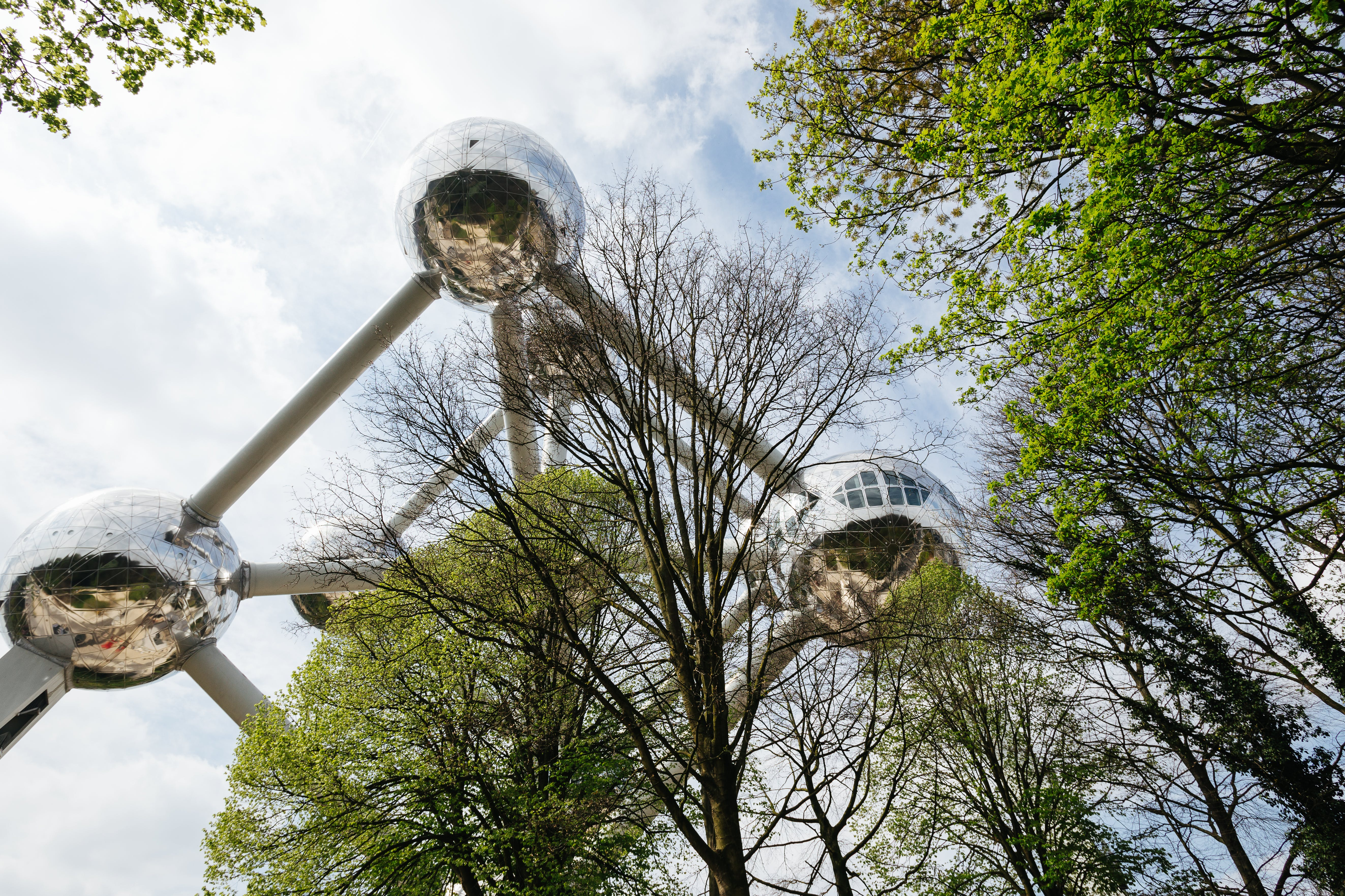 Free stock photo of trees, architecture, brussels, Belgium