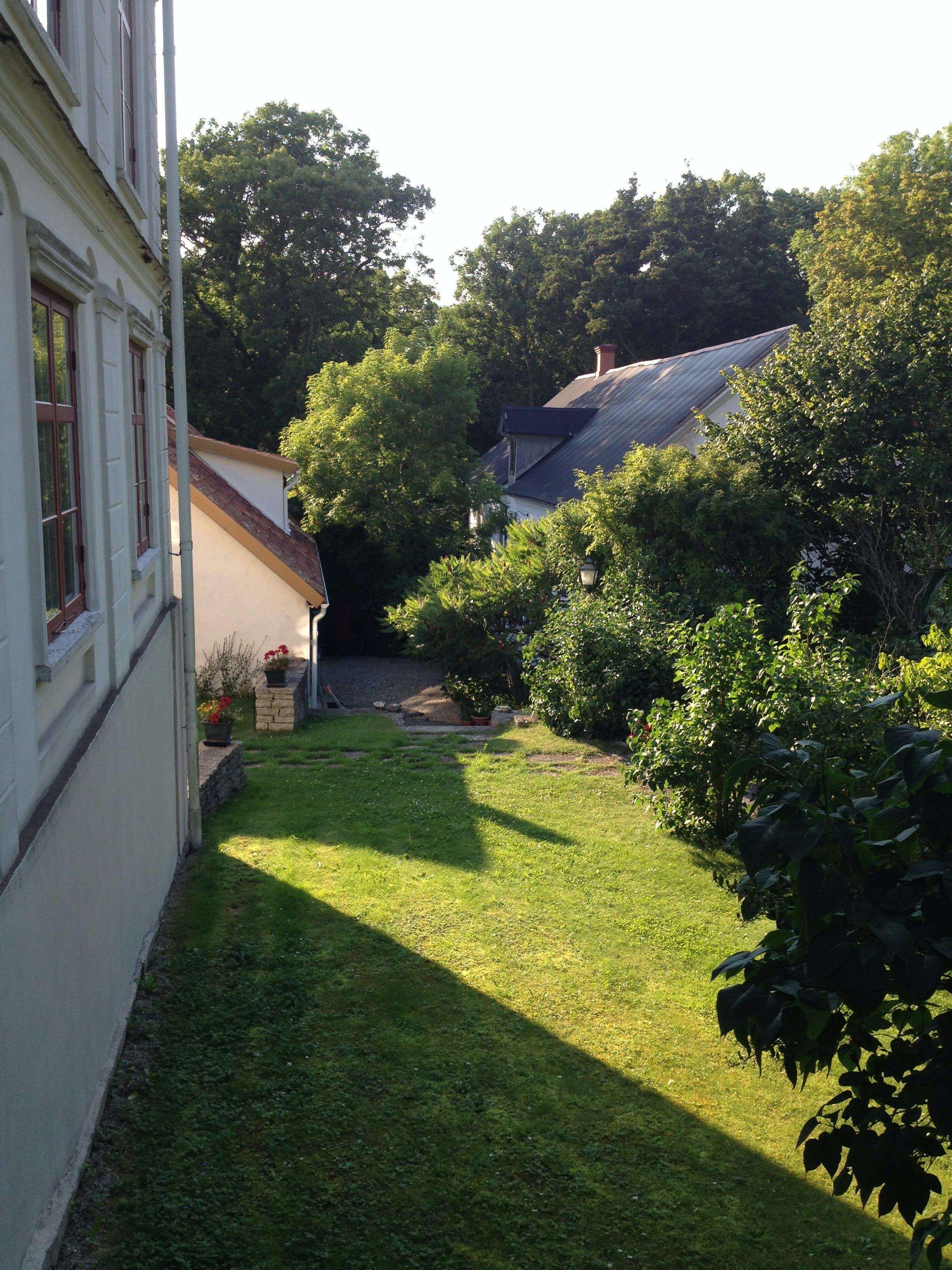 Free stock photo of Gotland, houses, summer