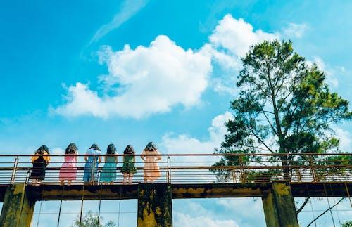 Ingyenes stockfotó építészet, fény, híd, könnyű témában