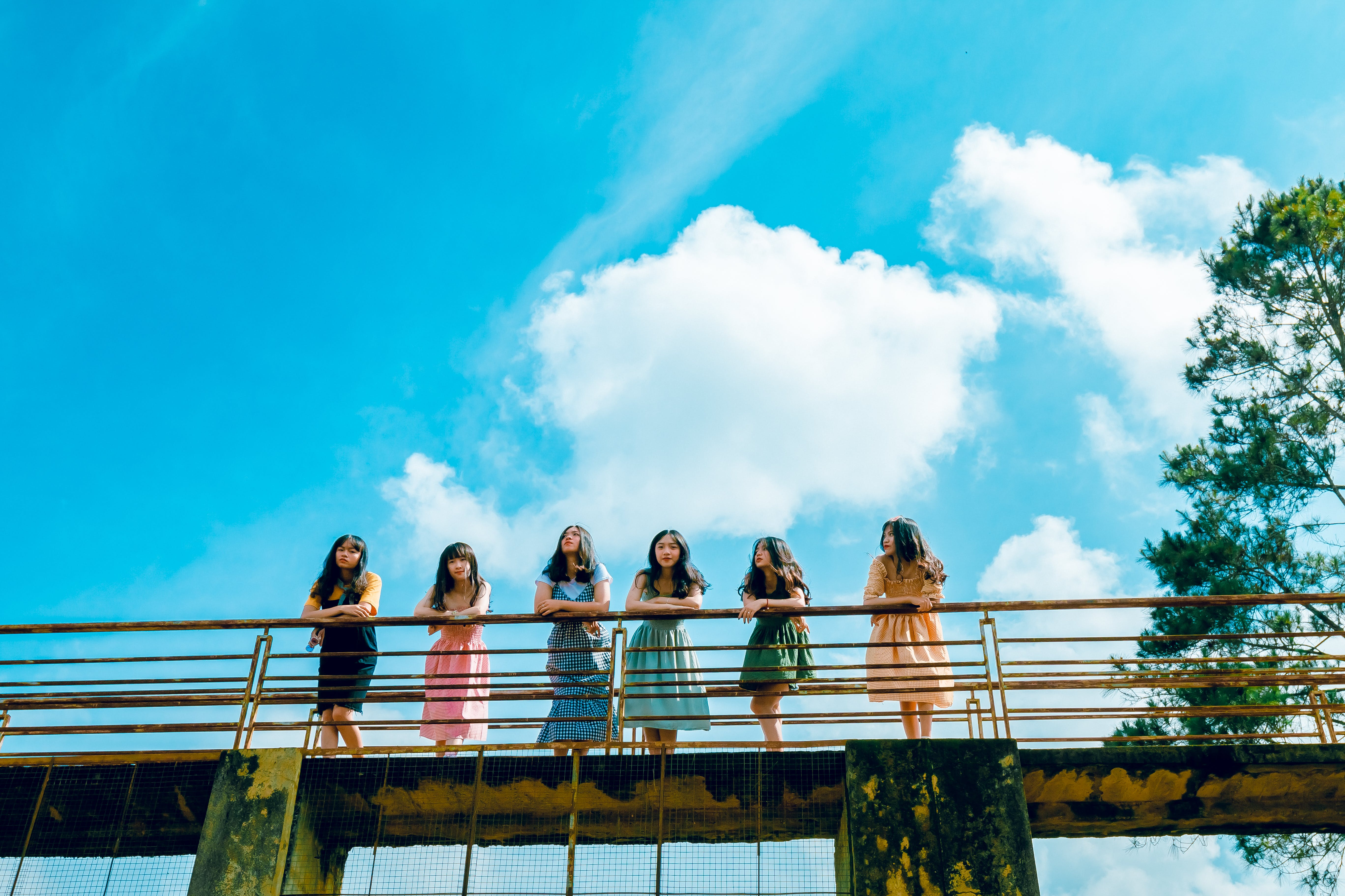 Six Women Wearing Dress Leaning on Bridge Rail