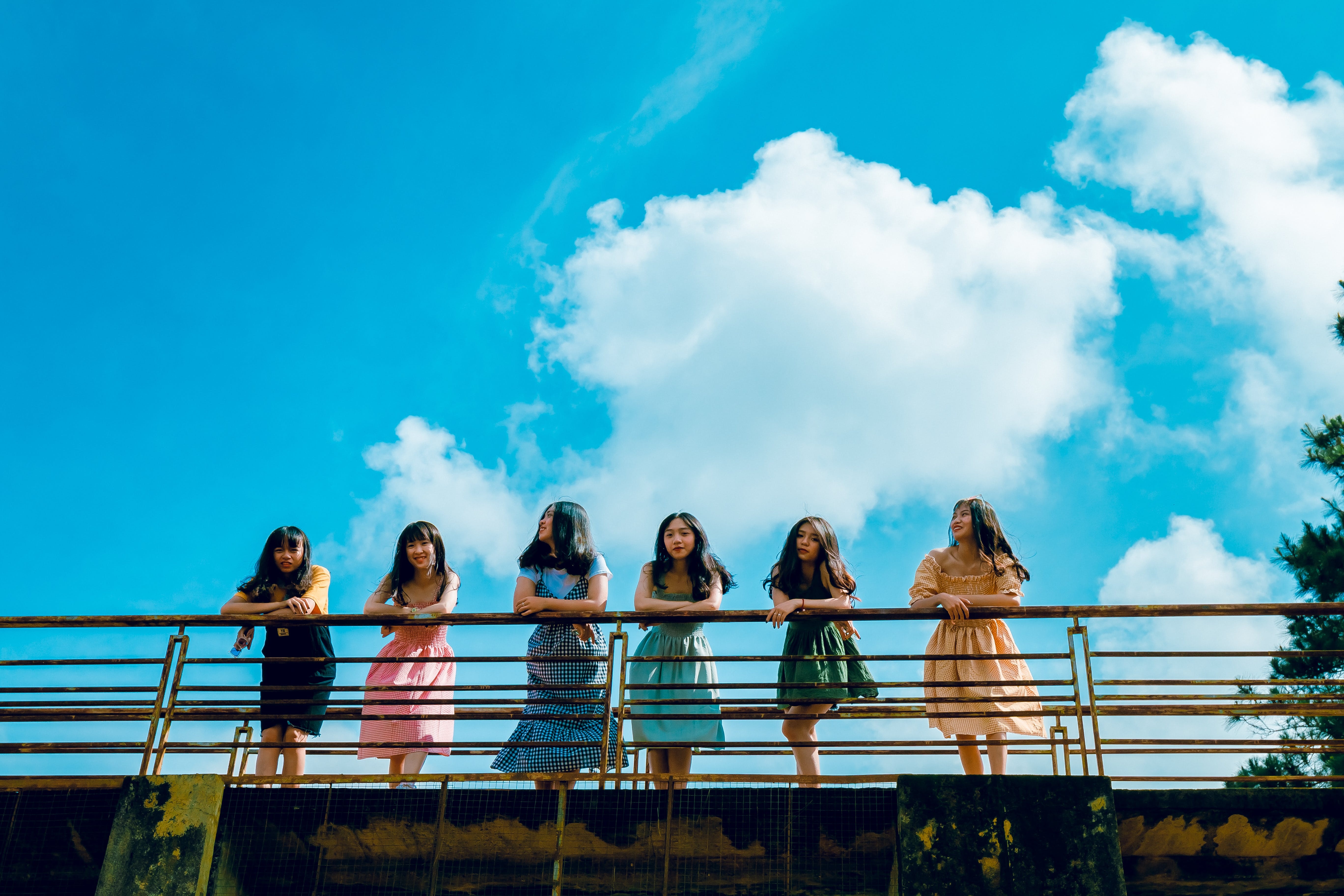 Six Women Wearing Mini Dresses Leaning on Bridge's Rail