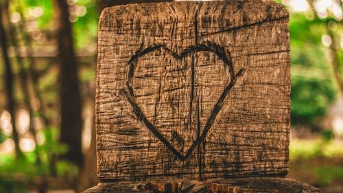Δωρεάν στοκ φωτογραφιών με αγάπη καρδιά ξυλογλυπτική δάσος γλυπτική