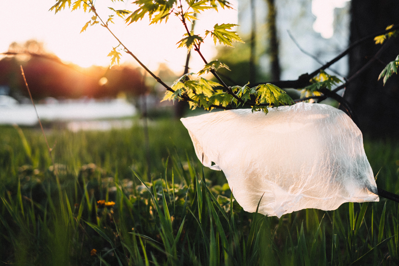 Plastic On Grass