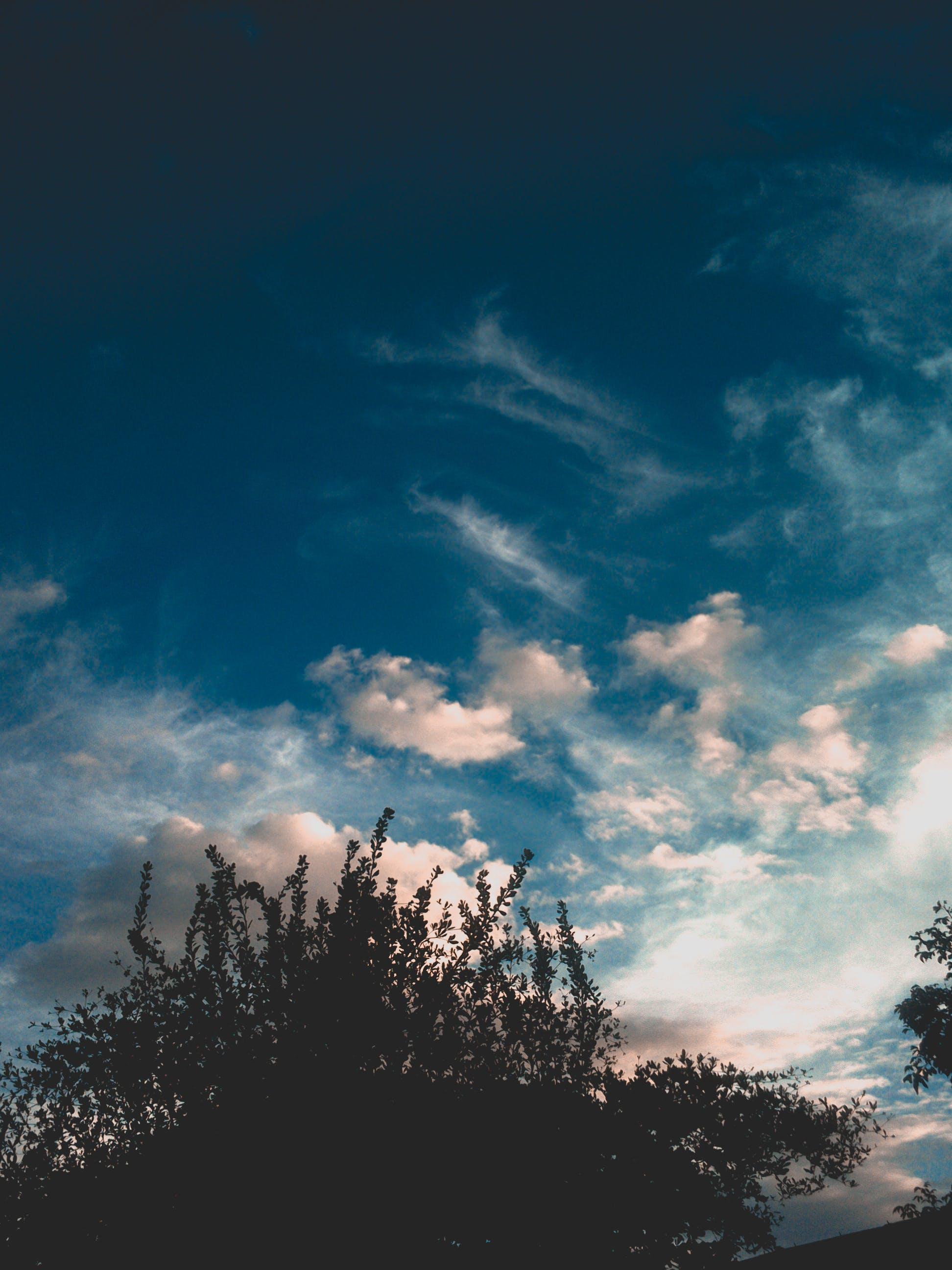 Foto d'estoc gratuïta de cel blau, cels, cels blaus, fotògraf