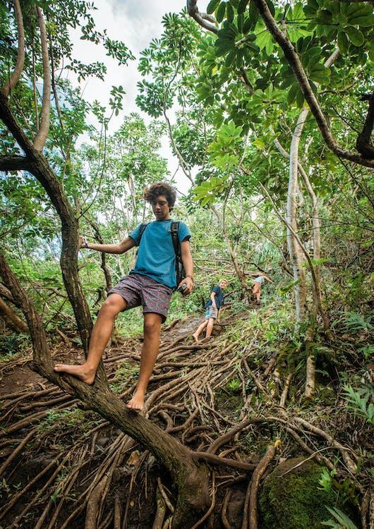 Hombre De Camiseta Azul De Pie Sobre El Tronco De Un árbol