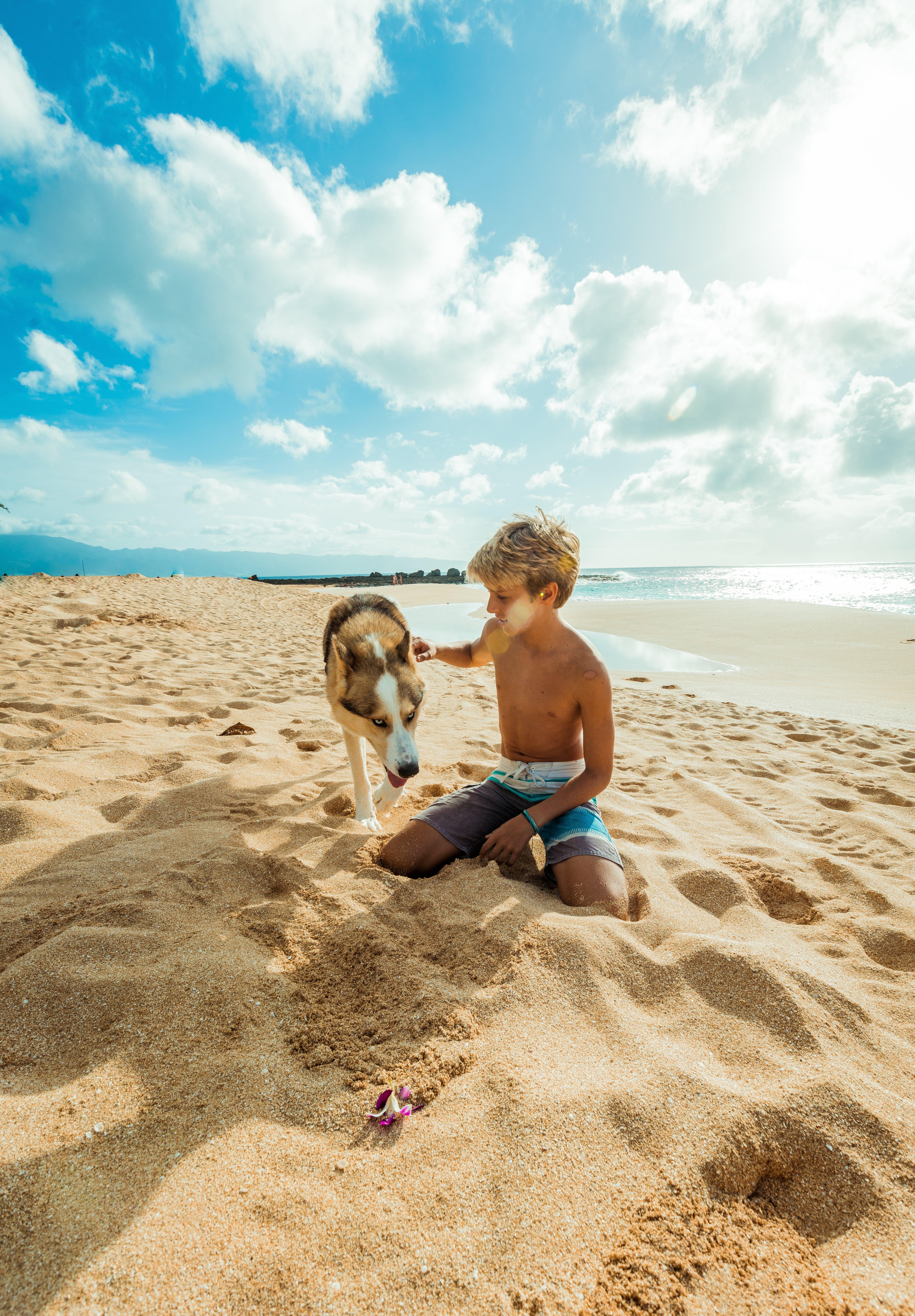 Boy Seating on Brown Sand