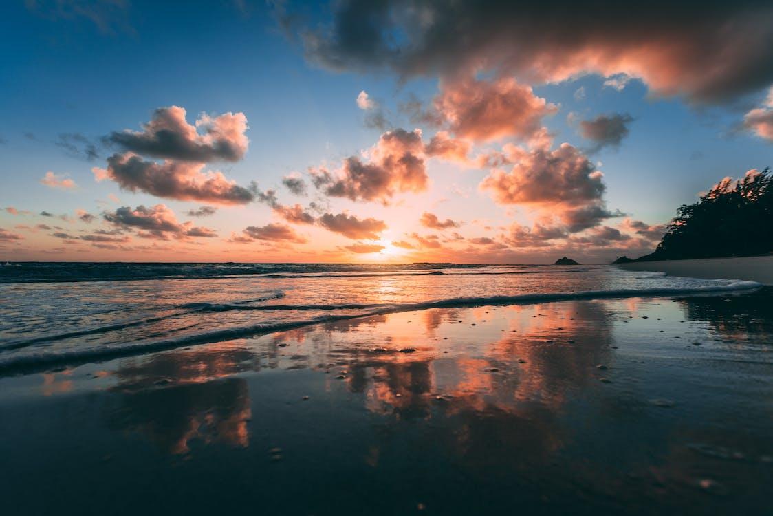 aften, gylden, hav
