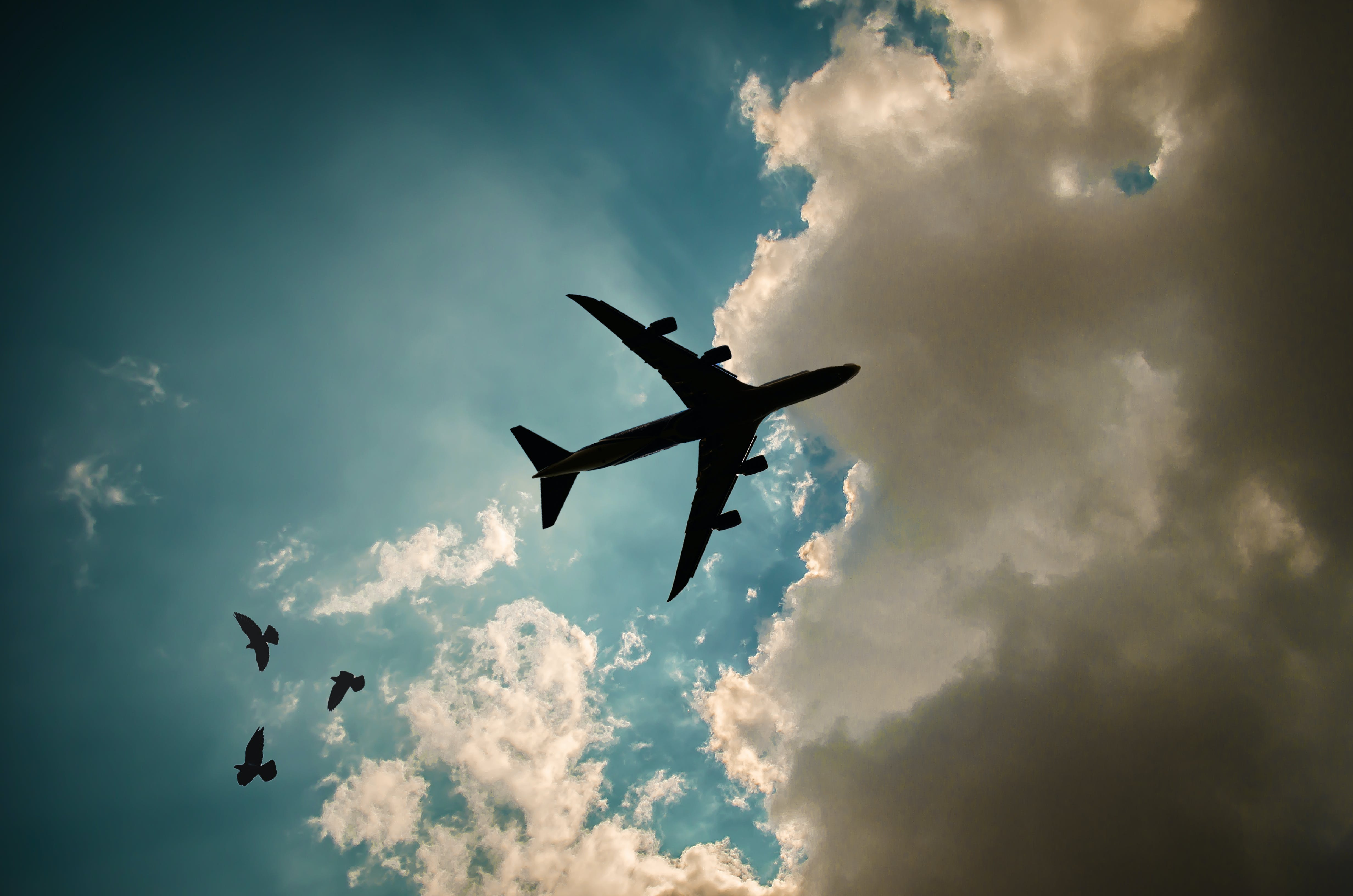 Free stock photo of air travel, aircraft, airplane, blue sky