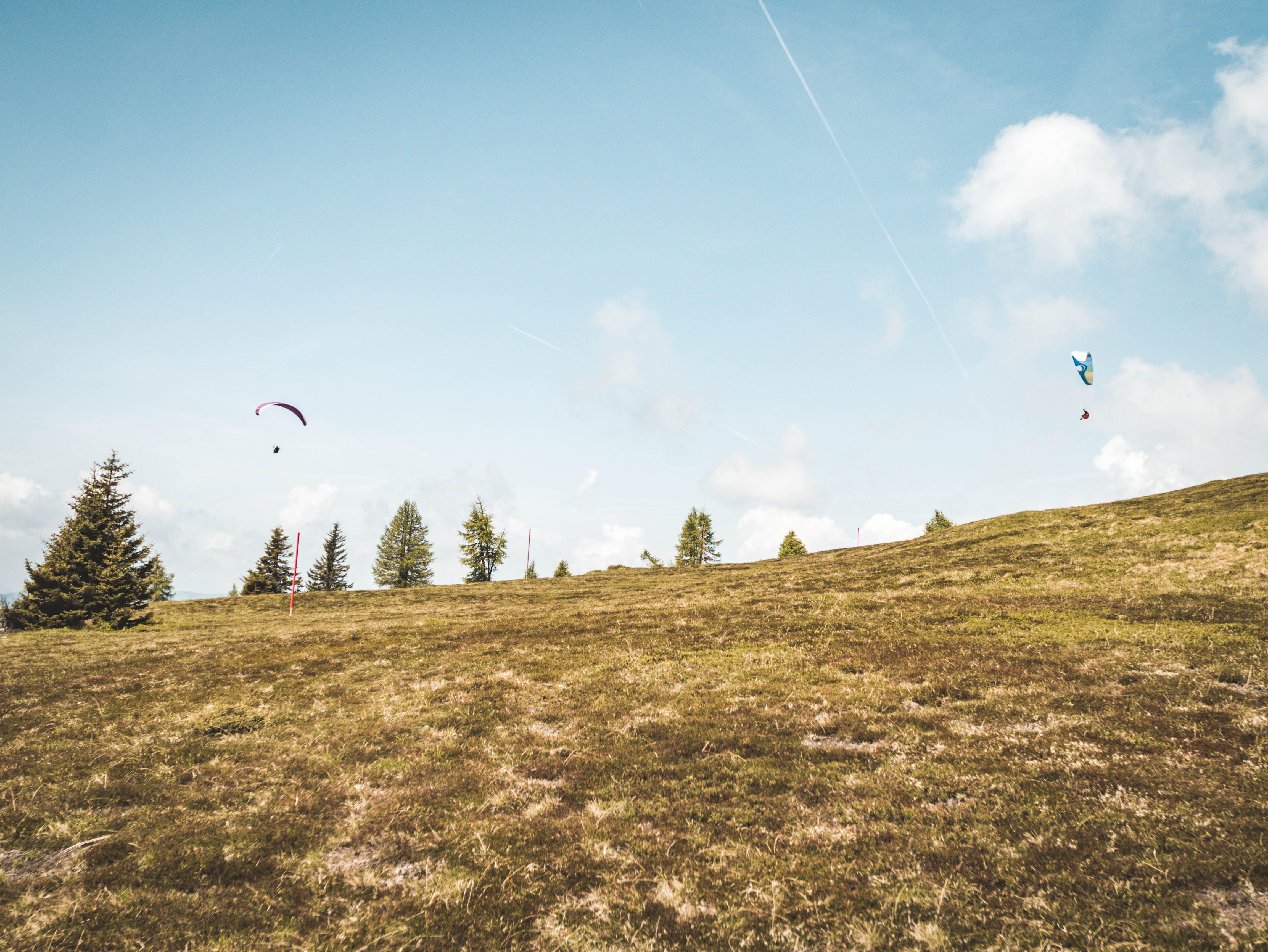 Gratis arkivbilde med åker, blå himmel, dagslys, gress