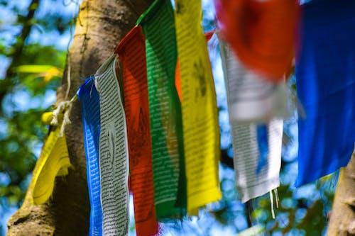 Immagine gratuita di bandiere, buddista, canti, pace